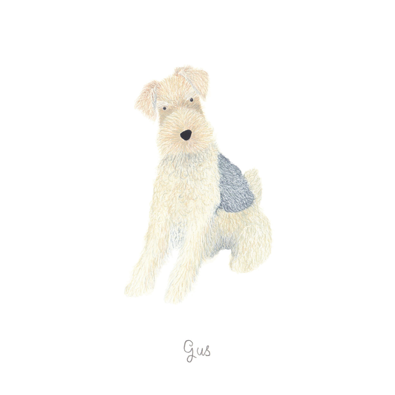 Illustrated Pet Portraits by Louise Jewell
