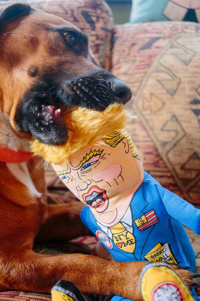 Presidential Parody Pet Toys from FUZZU