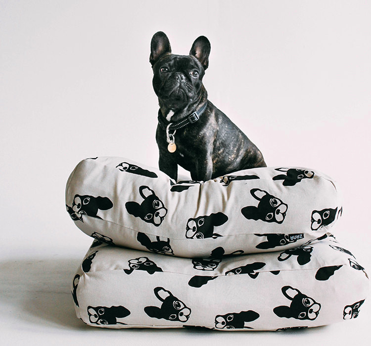 Modern Dog Beds from Zana