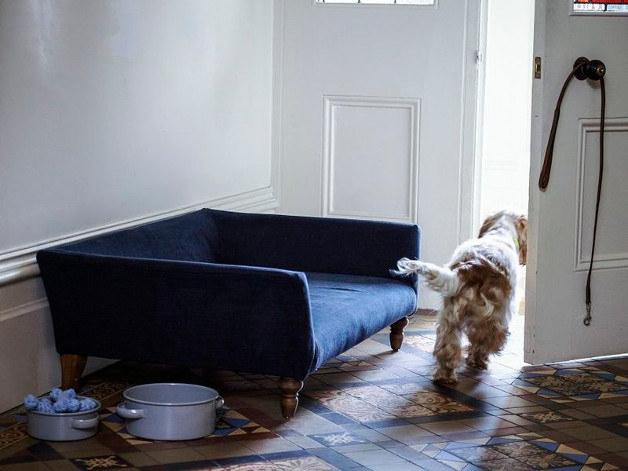 The Cecil: A Sofa-Style Dog Bed