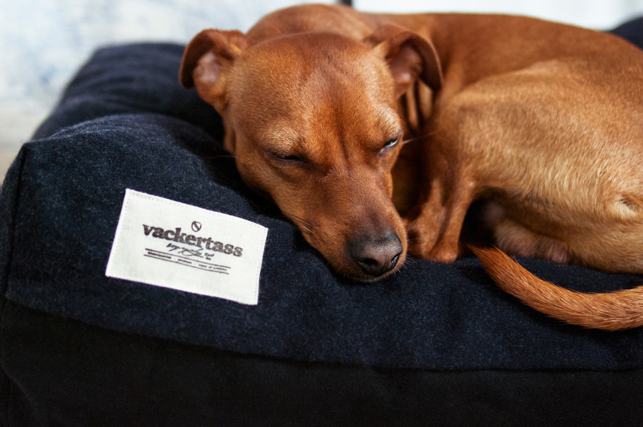 Wool and Canvas Dog Beds from Vackertass Supply Co.
