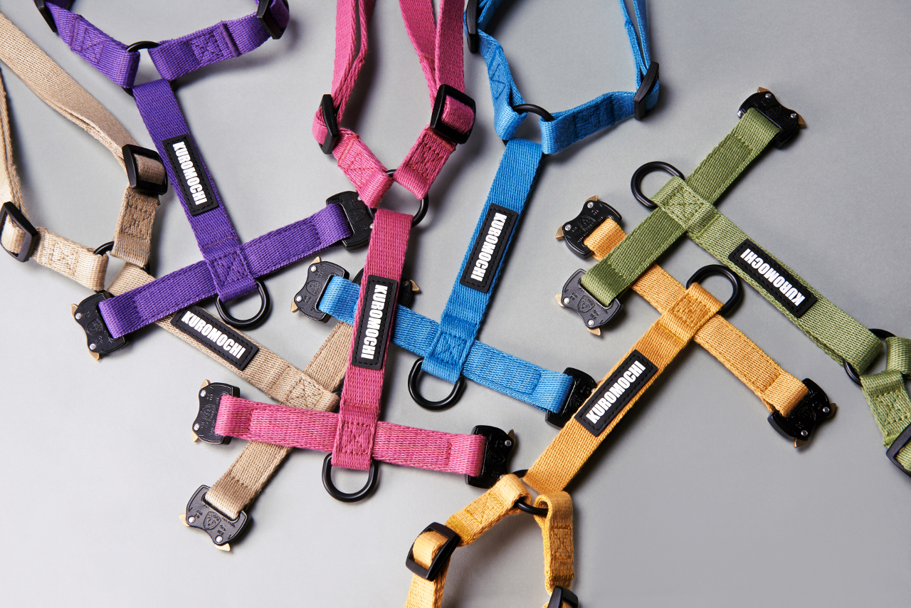 Heavy Duty Collars, Leashes, & Harnesses from KUROMOCHI