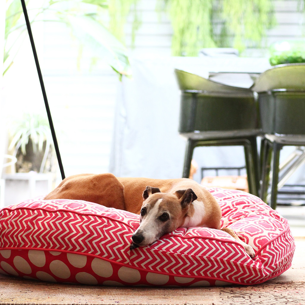Reversible Dog Beds from Dharf