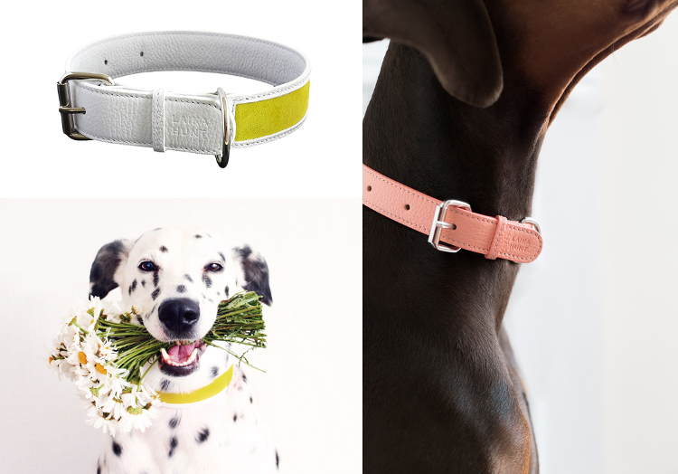 Luxury Leather Dog Collars and Leads from LAIKA HUNT