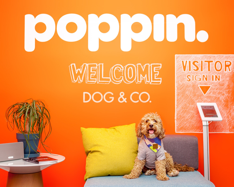 Spotted: The Pups of Poppin