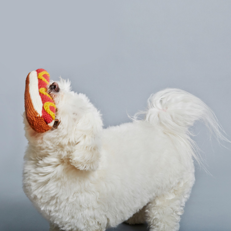 ware-of-the-dog-knit-dog-toys-2