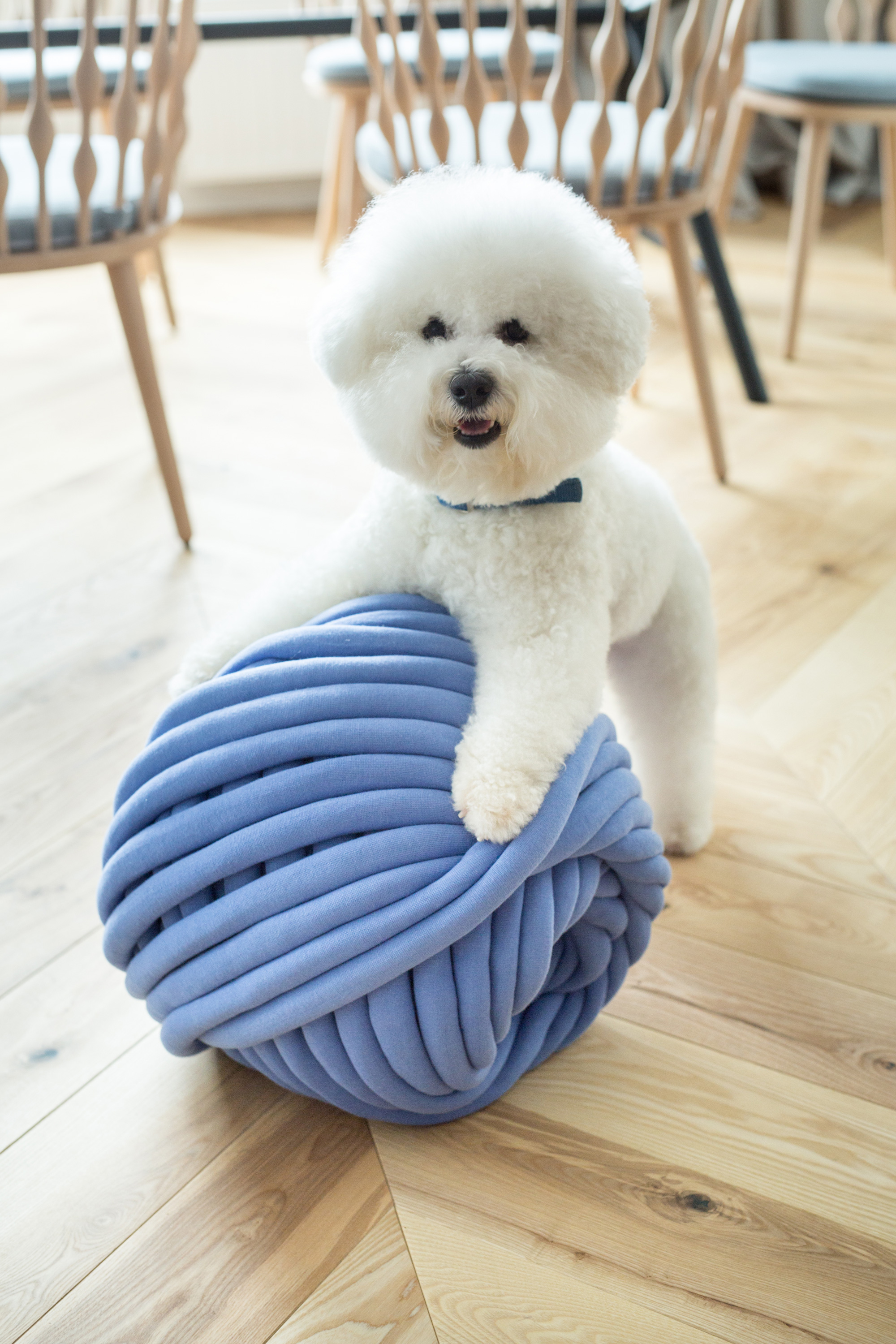 ohhio-braid-chunky-knit-pet-beds-3