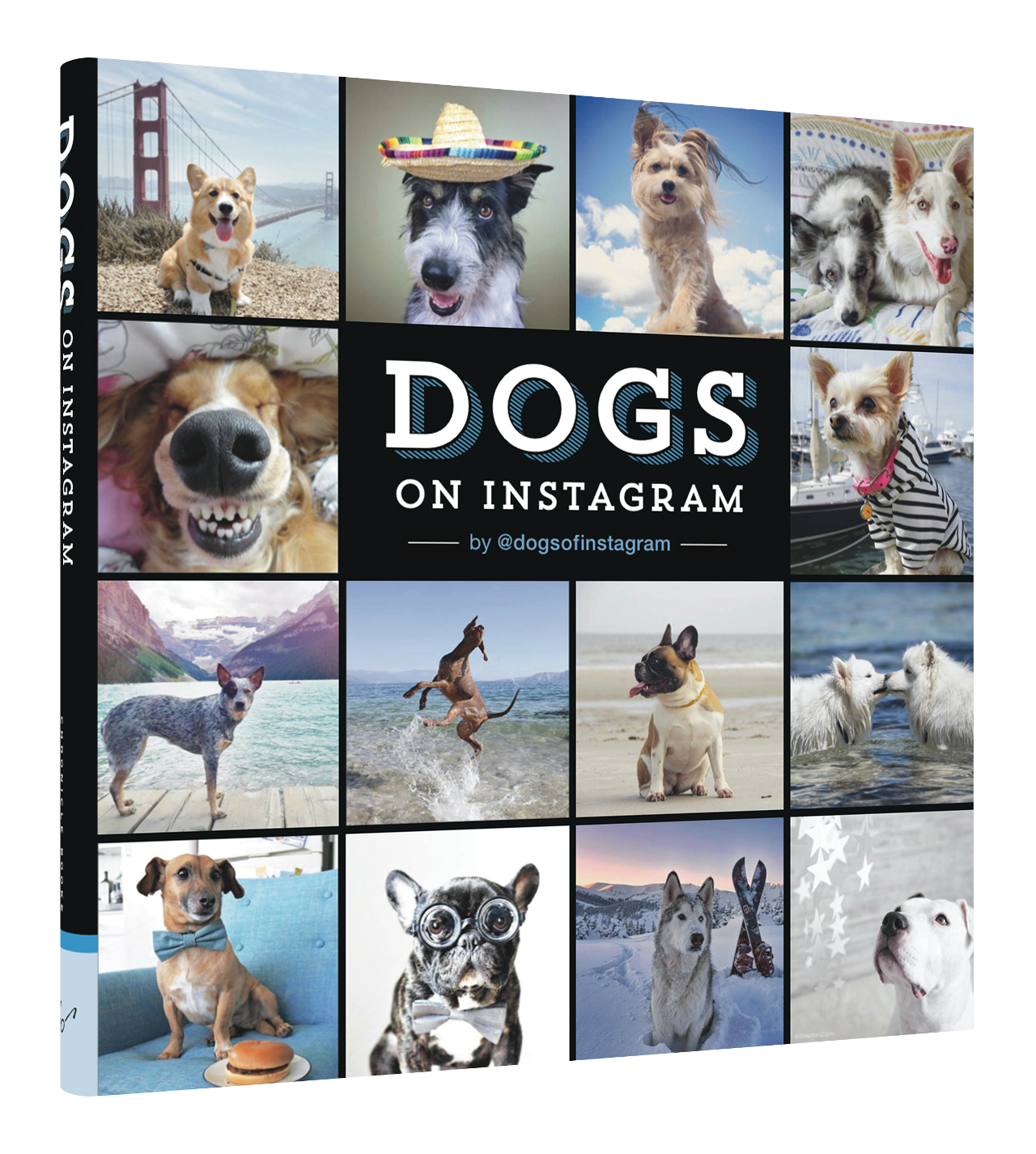 Dogs on Instagram Book Giveaway with Chronicle Books and @dogsofinstagram