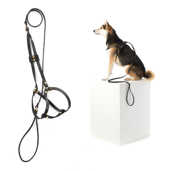 Luxury Feeders and Accessories from Mr. Dog New York