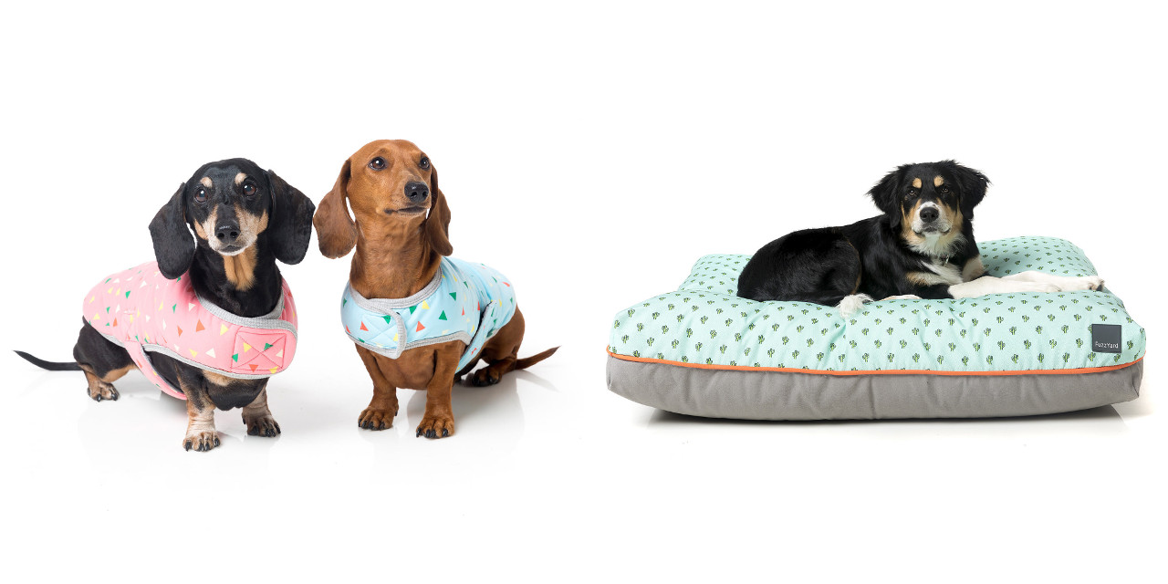 Modern Dog Coats and Beds from FuzzYard