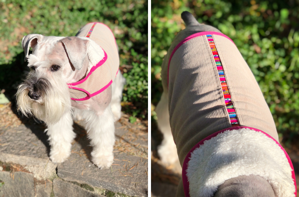 Peruvian Textile Dog Coats from Paco & Lucia