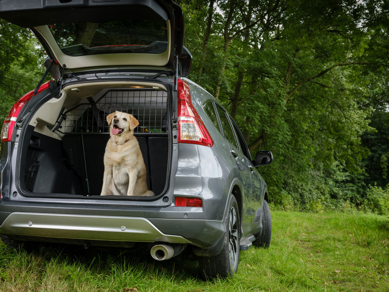 Vehicle-Specific Pet Safety Barriers from Travall