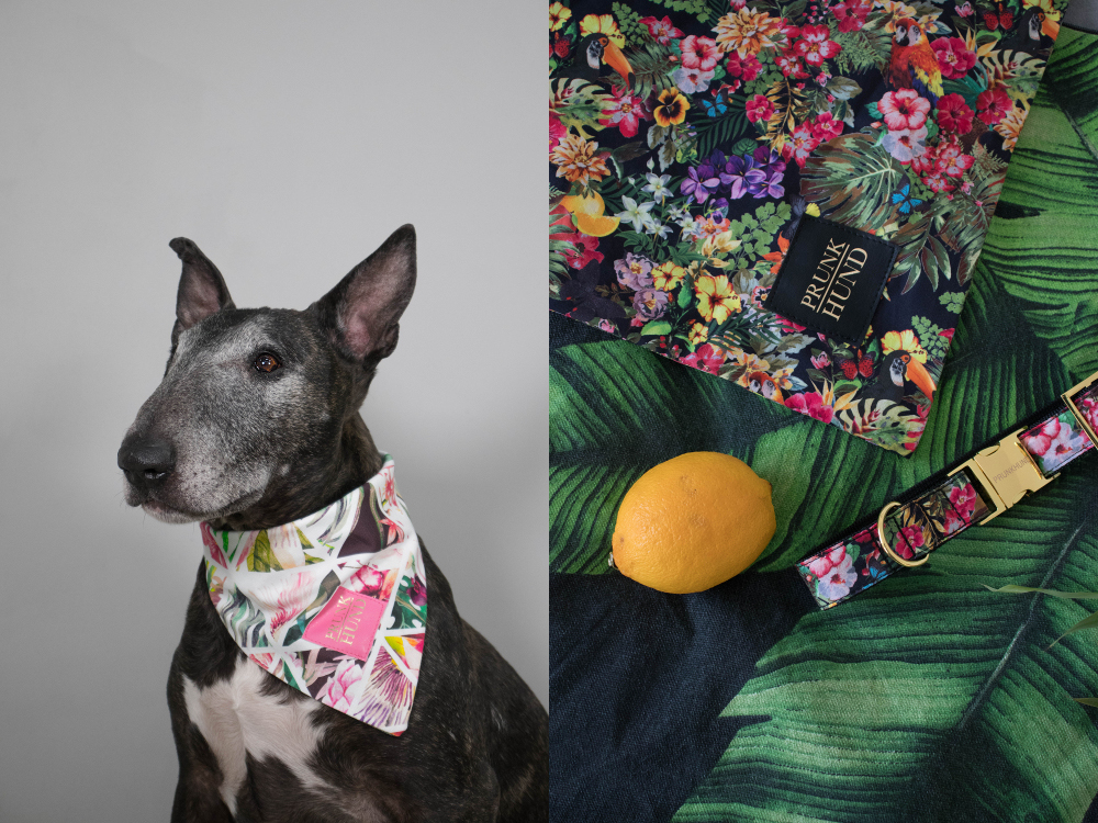 Spring/Summer 2018 Collection from Prunkhund