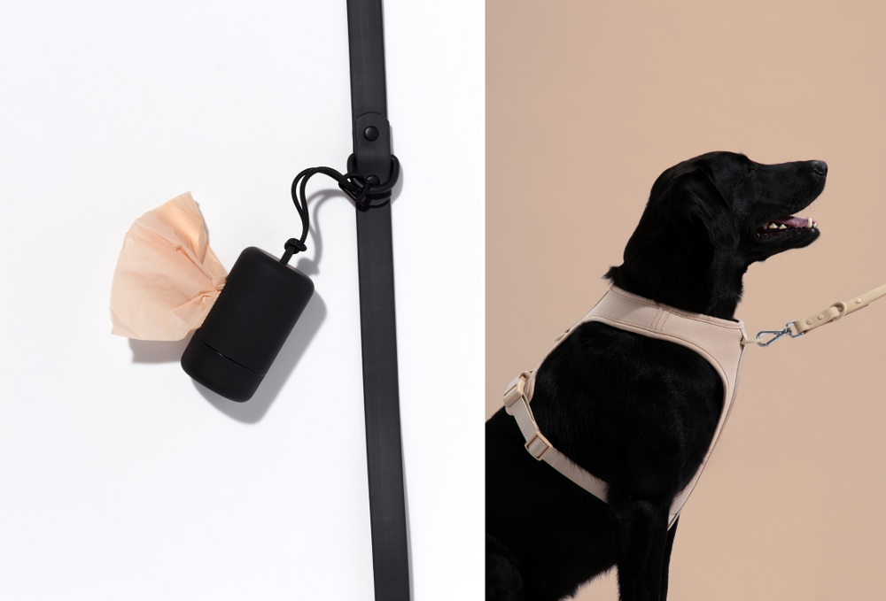 Stylish Pet Essentials from Wild One
