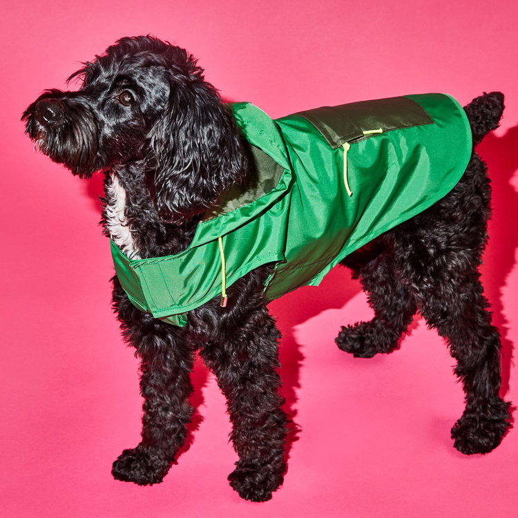 Color Block Puffer Jackets and Raincoats from Ware of the Dog