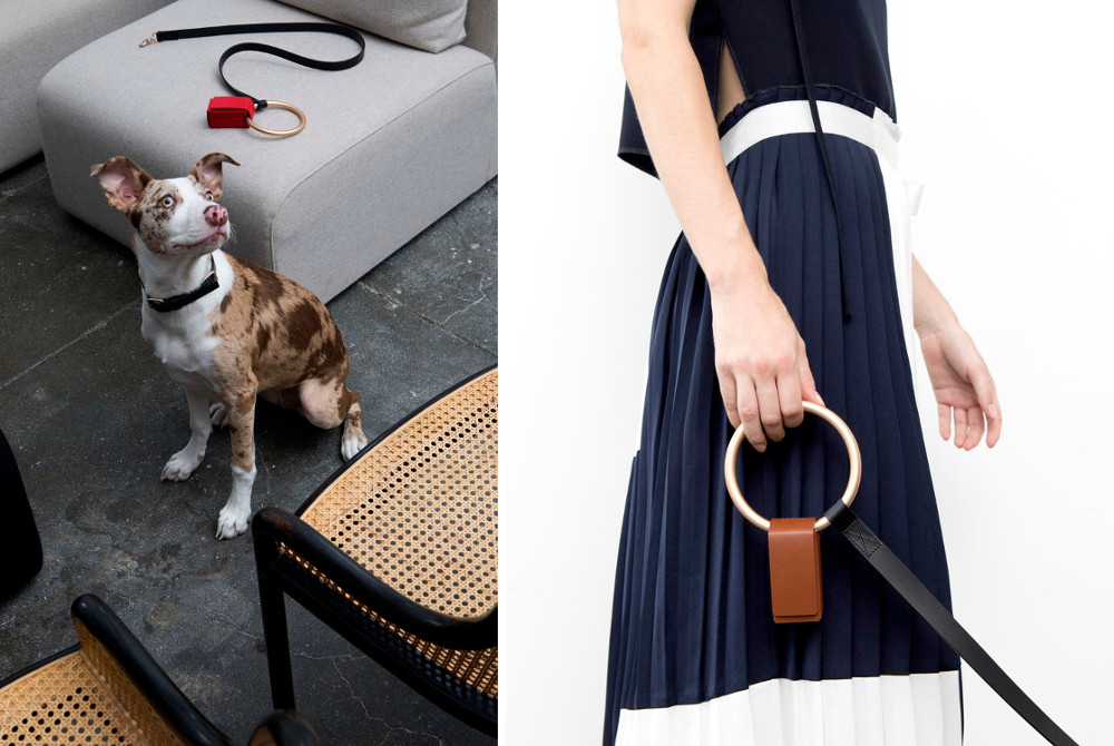 Sophisticated Dog Collars, Leads, and Accessories from Boo Oh