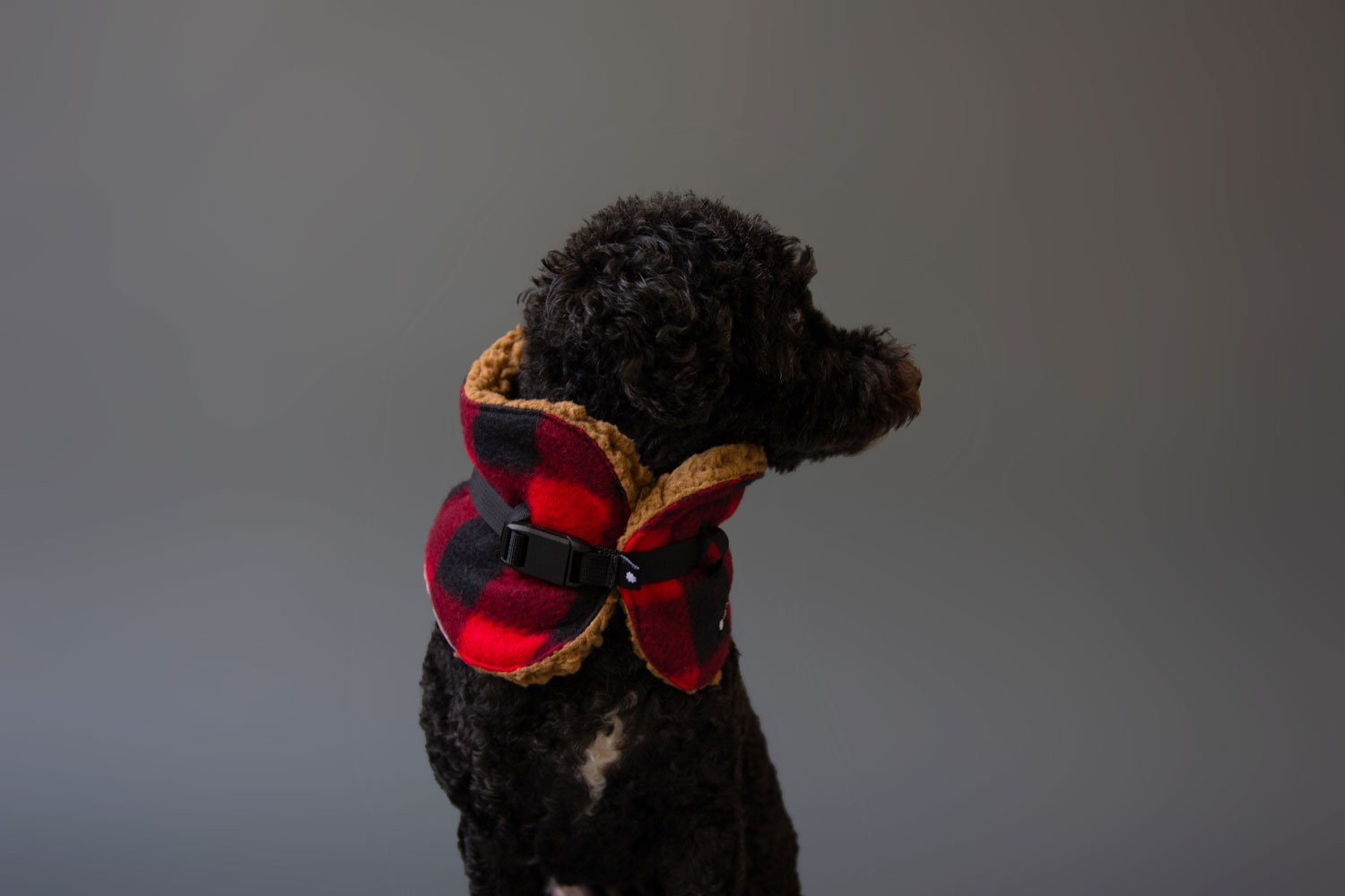 Buffalo Plaid Dog Scarf from Wildebeest