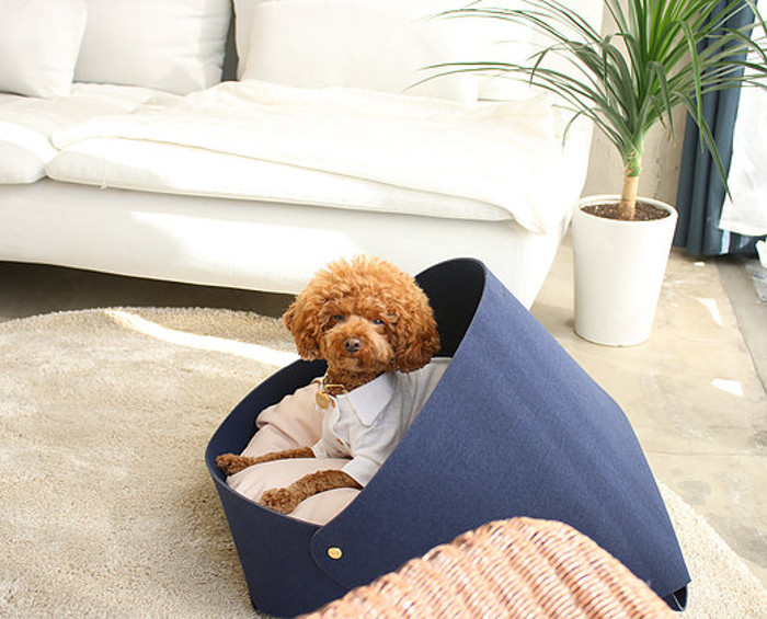 Dog Milk Holiday Gift Guide: 15 Cozy Beds for Dogs