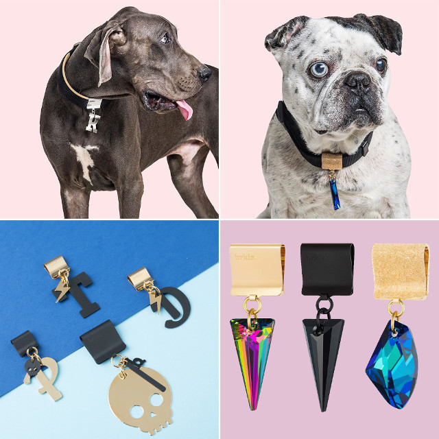 Dog Milk Holiday Gift Guide: Coats, Sweaters, and More