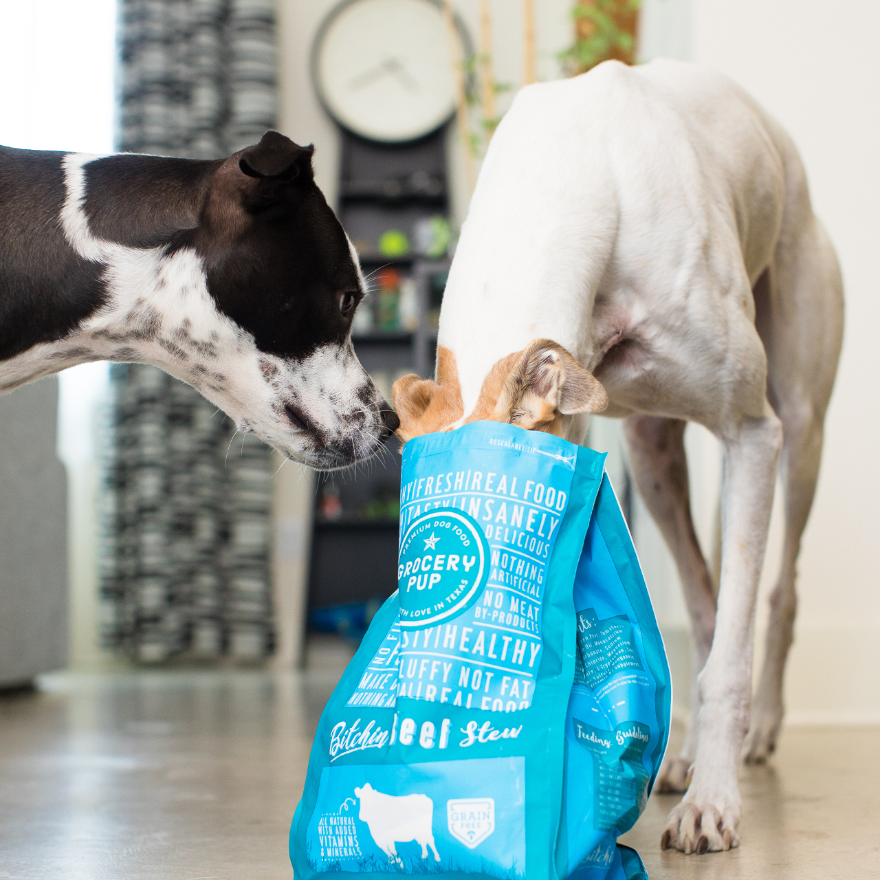 Human Grade Dog Food Delivery from Grocery Pup