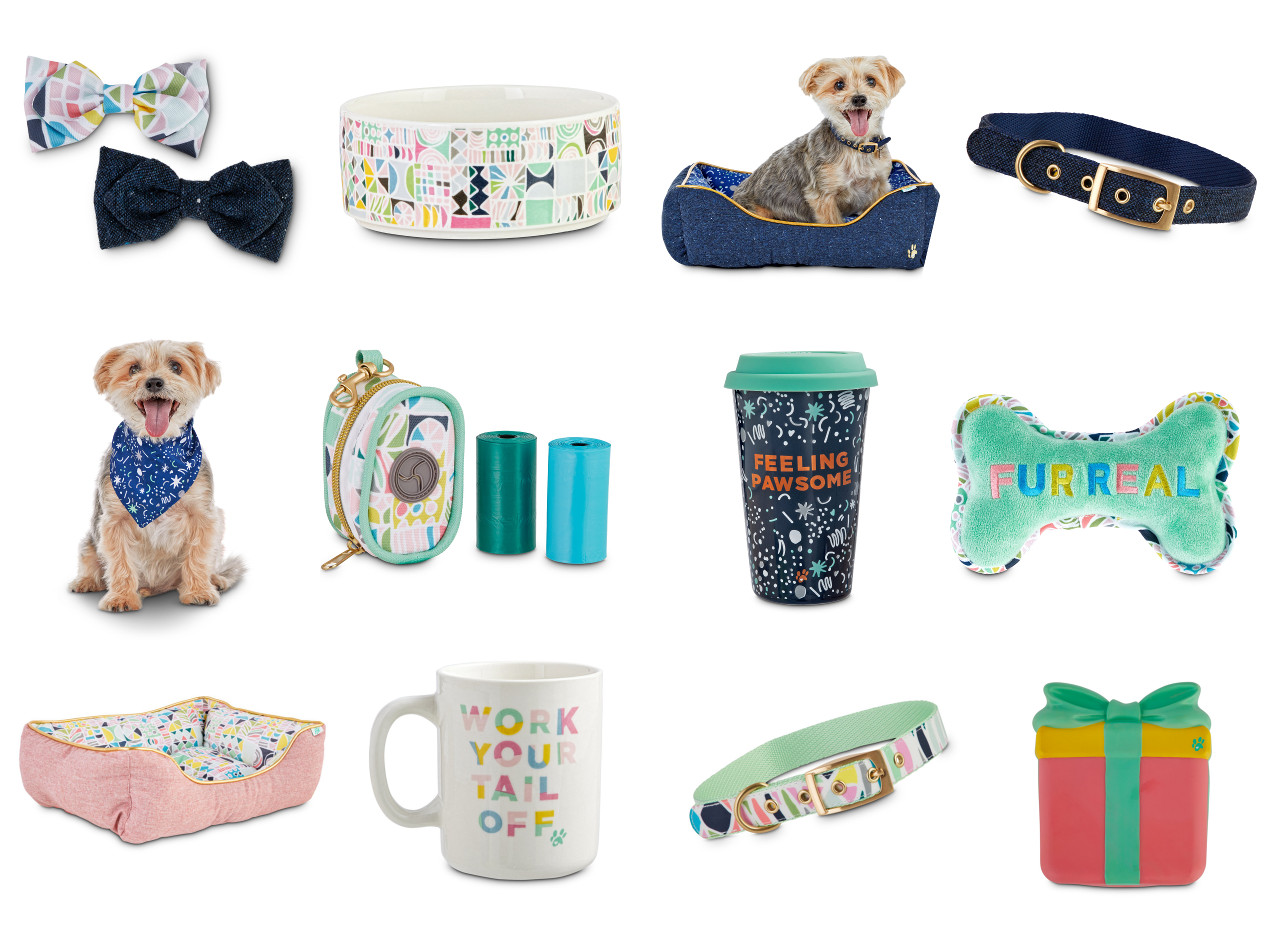 Oh Joy for Petco Dog Accessories
