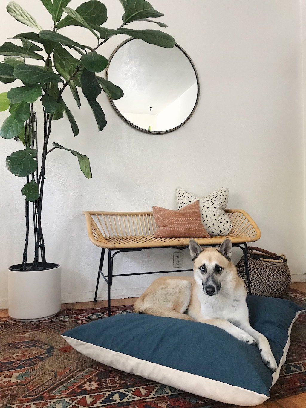 Eco-Friendly Handmade Dog Beds from The Wolf Nest