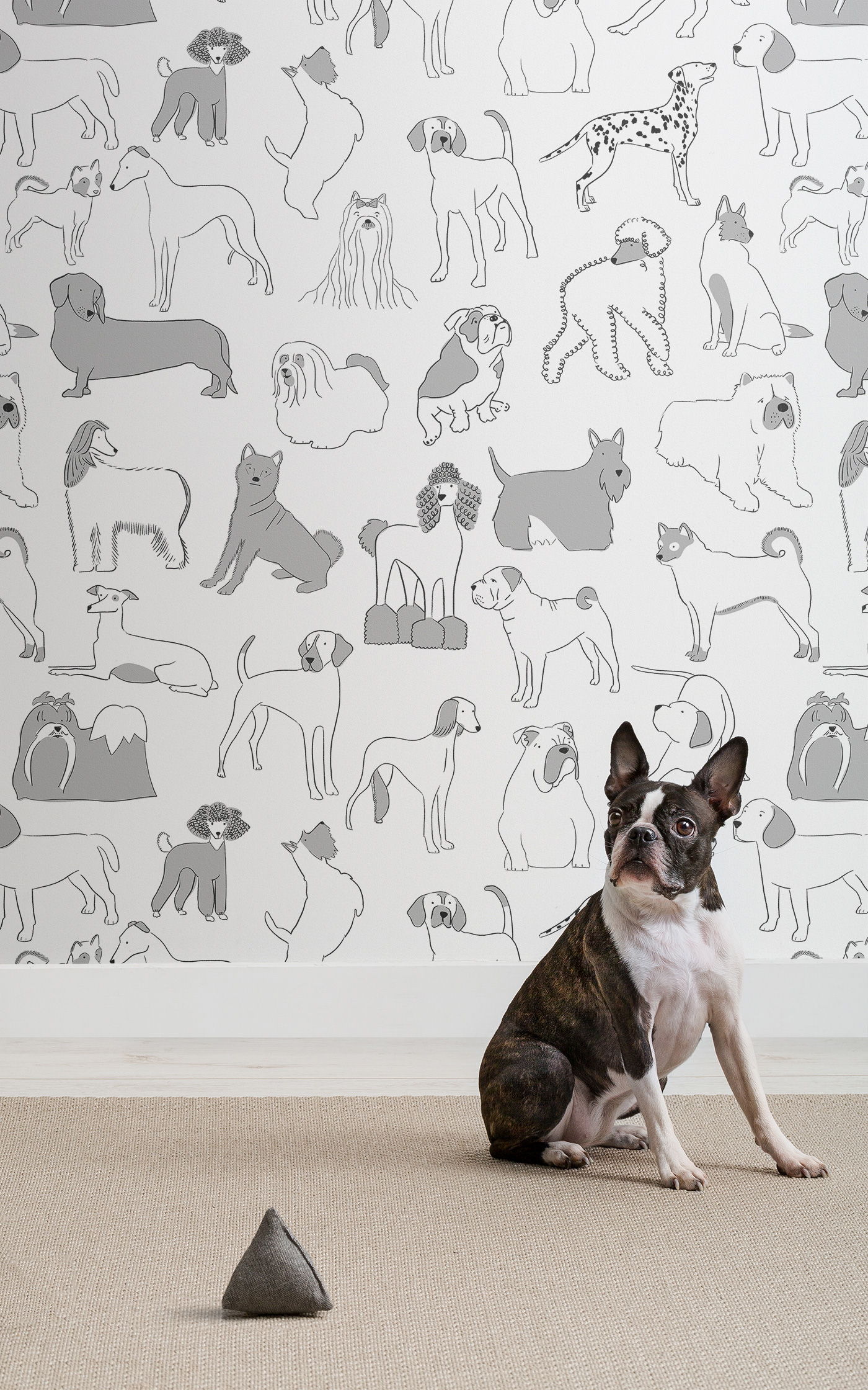 Dog Patterned Wall Coverings From Murals Wallpaper Design Milk