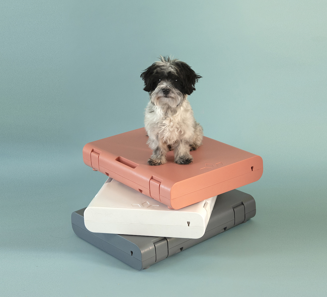 PAWD Pet Crate from KindTail