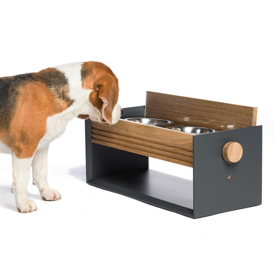 Modern Pet Feeders, Beds, and More from PETTEL