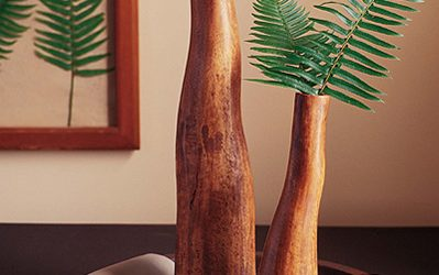 Branch Vases