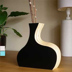 Cool Curved Vase in home furnishings  Category