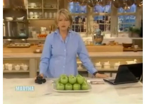 Martha Stewart Blogging Show!