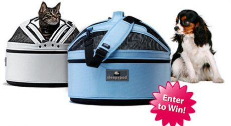 Sleepypod Ugliest Pet Bed Giveaway