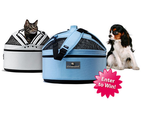 Vote for the Ugliest Pet Bed