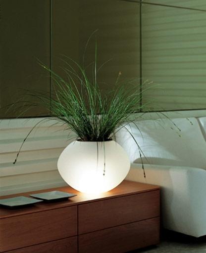 Biosfera Lamp