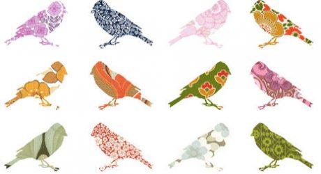 Wallpaper Birds