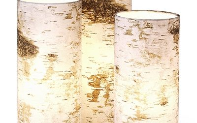 Birch Lamps and Tree Pendants