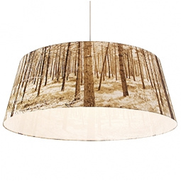 Birch Lamps and Tree Pendants in main home furnishings  Category