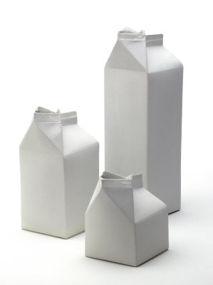 Milk Carton Designs in home furnishings  Category