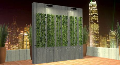 The Manifesto Garden