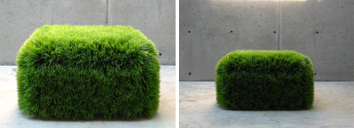 Forget Lawns, Go For Creative Grass in main interior design  Category