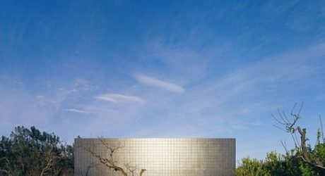 20×20 House in Chile by Felipe Assadi and Francisca Pulido