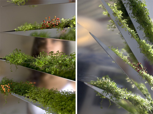grass-mirror-3