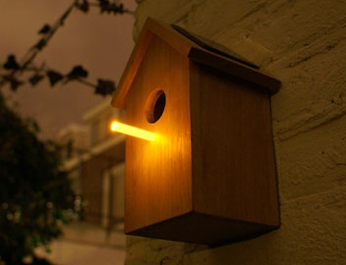 Modern Birdhouses in main home furnishings  Category