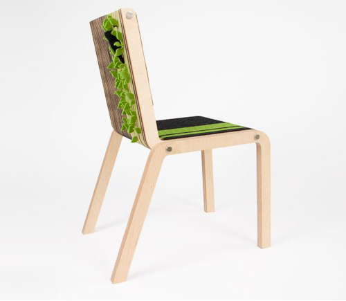 Gaia Chair by Tuyo Design in main home furnishings  Category