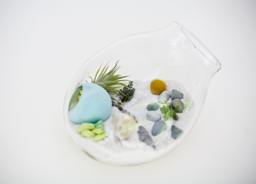 Lítill Terrariums in home furnishings  Category