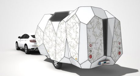 Mehrzeller, the Multicellular Caravan