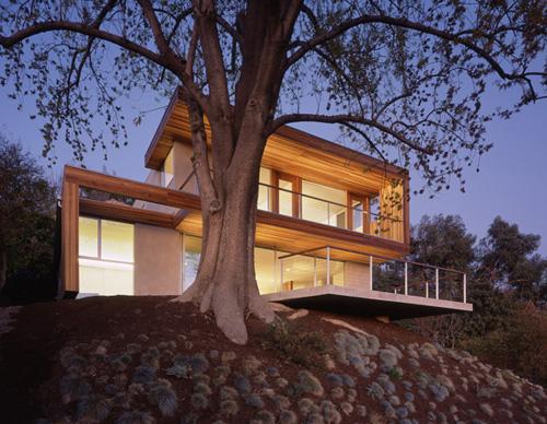 treehouse-standard-2