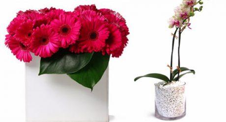 FloralArt LA