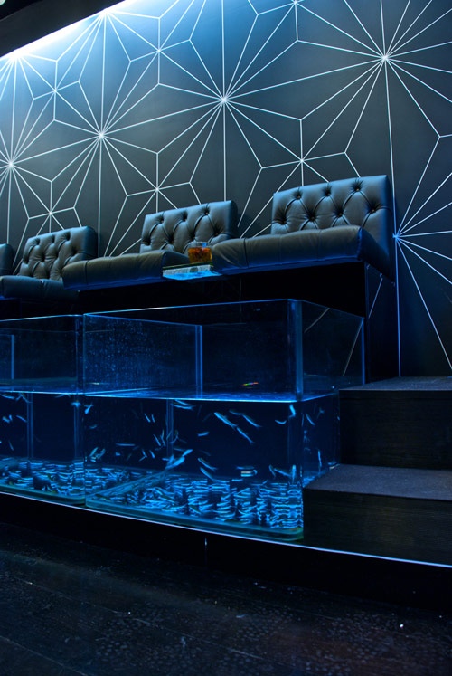 Aqua Sheko in the UK by 7Gods in main interior design  Category